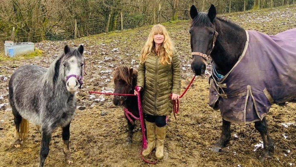 Amanda Jones and horses