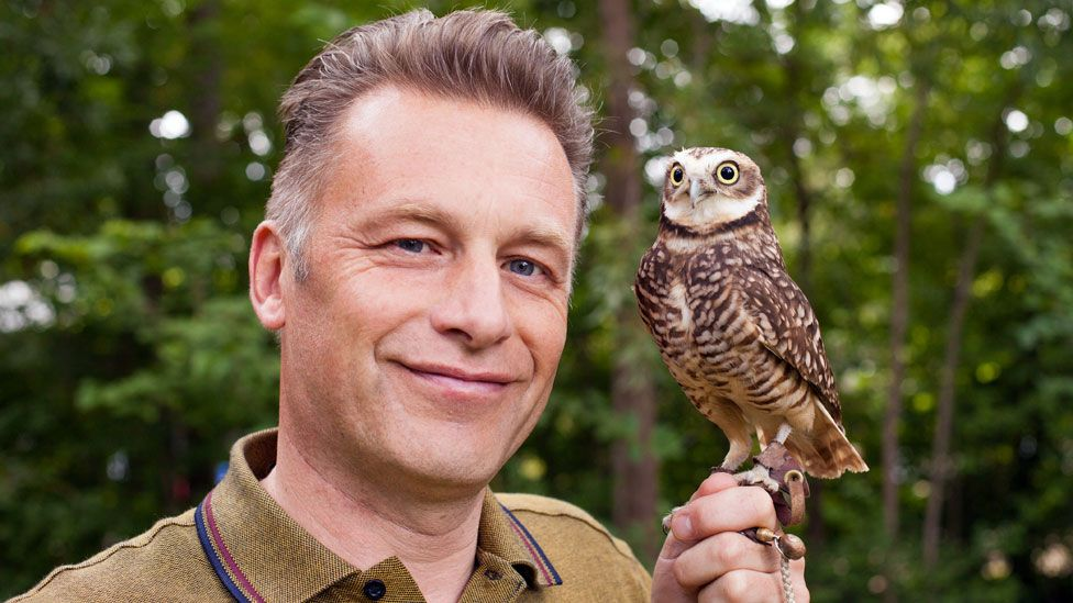 Chris Packham with American burrowing owl