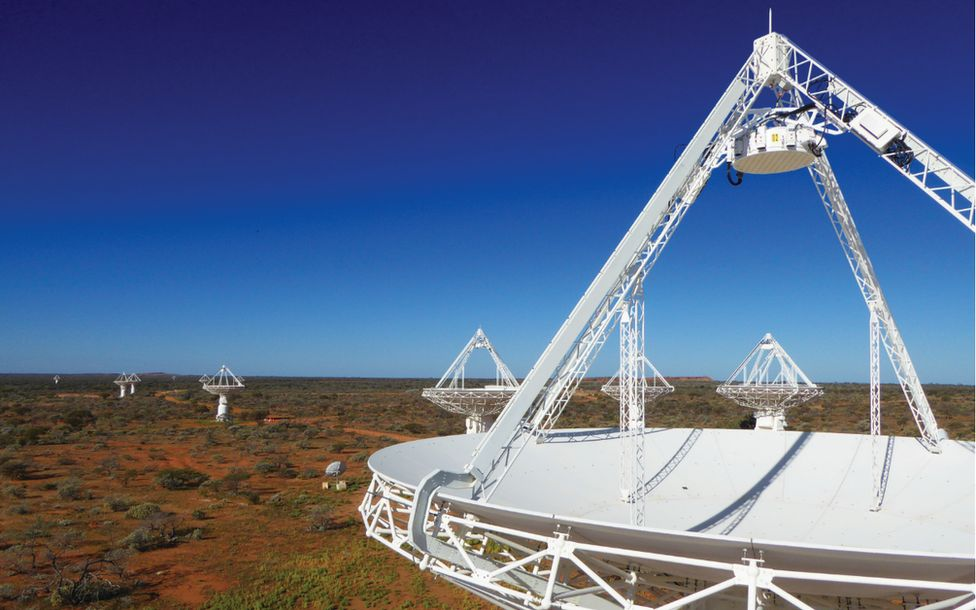 The Askap telescope dishes in Western Australia