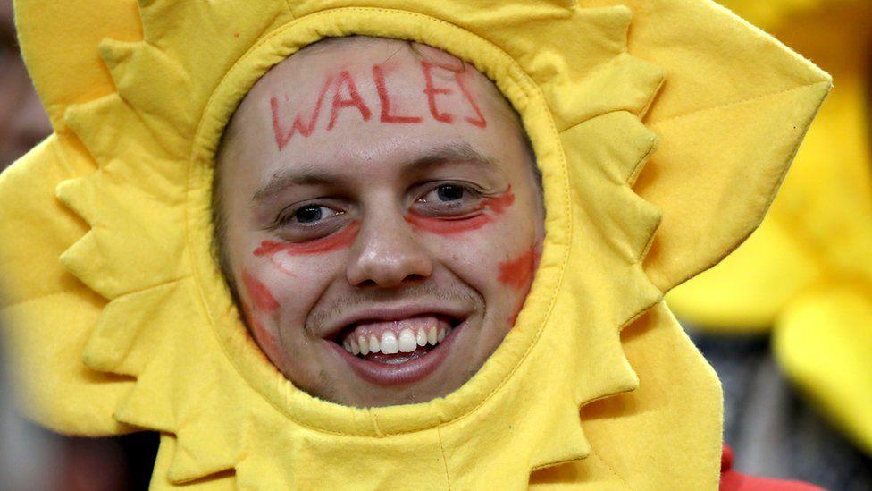 Wales fan in a daffodil