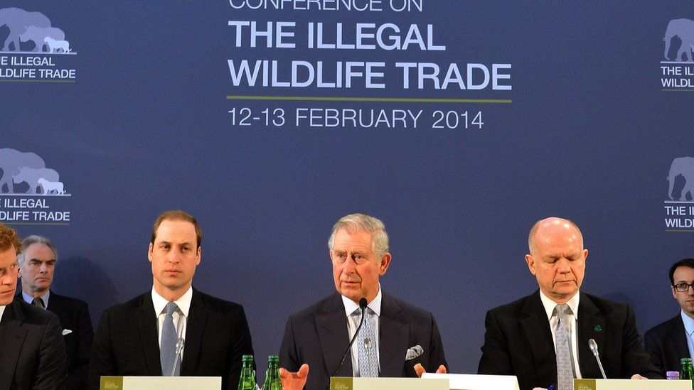 Prince Charles discussing illegal wildlife trade