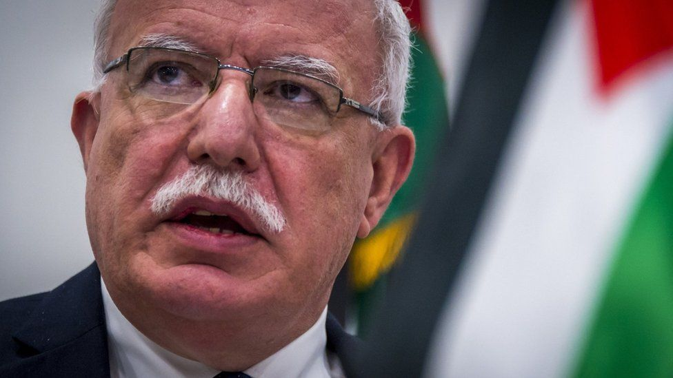Palestinian Foreign Minister Riad Malki speaks to reporters after meeting the chief prosecutor of the International Criminal Court in The Hague (22 May 2018)