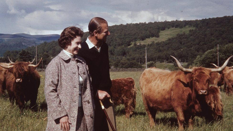 Queen Elizabeth and Prince Philip in a field with some Highland cattle at Balmoral in 1972