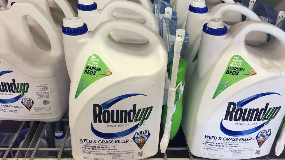Roundup weedkiller at a home improvement store.