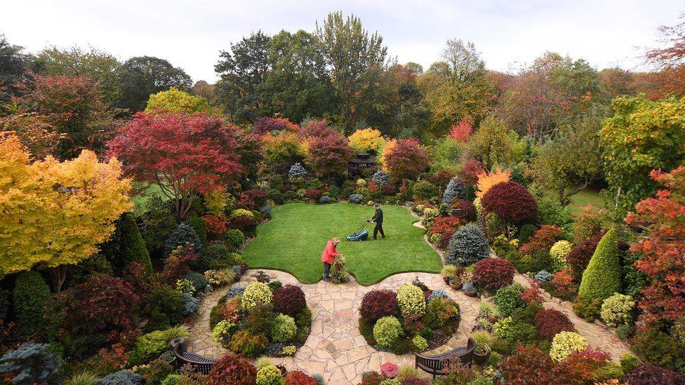 Welcome To Britain S Best Back Garden Bbc News
