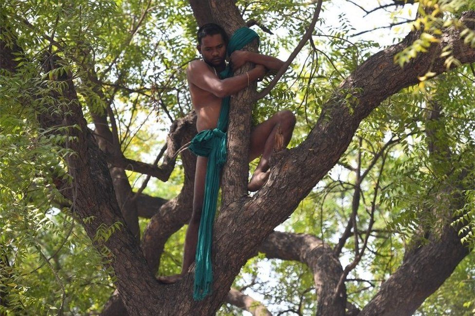 An Indian farmer from Tamil Nadu state climbs a tree in a bid to commit suicide, but was later coaxed down, during a protest in New Delhi on March 15, 2017.