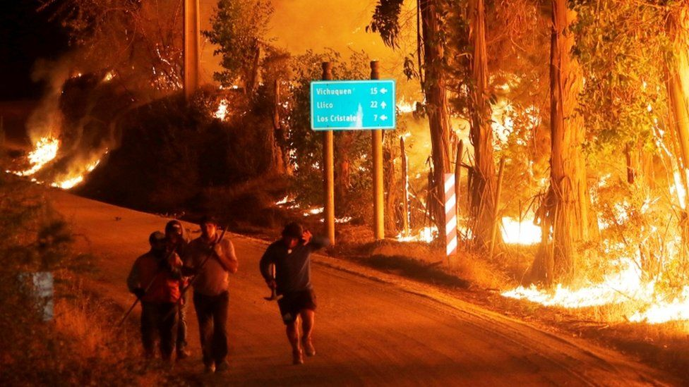 Fire is seen along a road in the town of Hualane during a big forest fire, on the outskirts of the Curico city