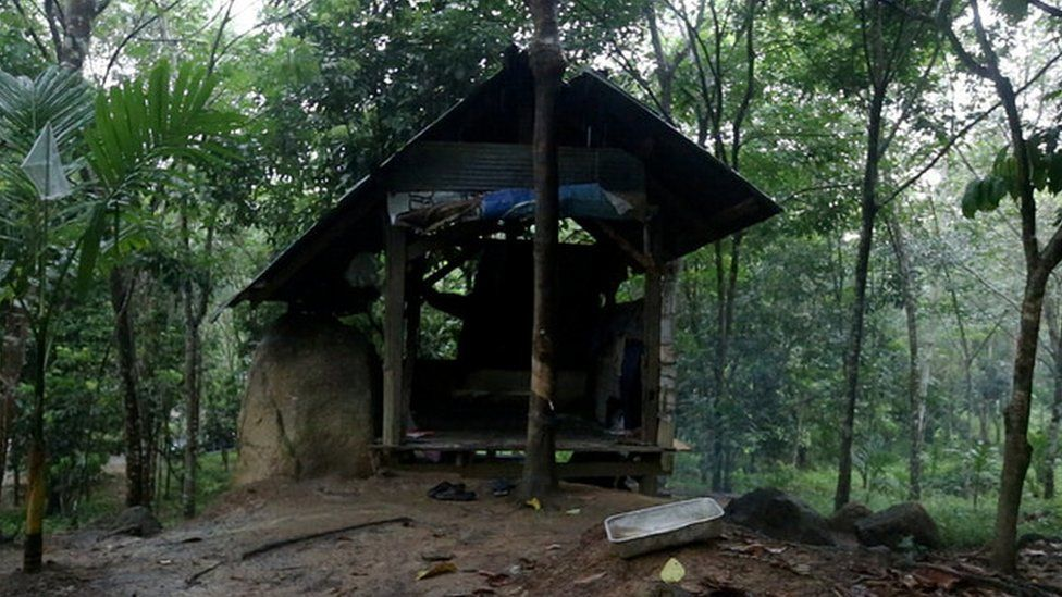 Picture of the wooden hut in a rubber plantation where Fadel and his friends take kratom.