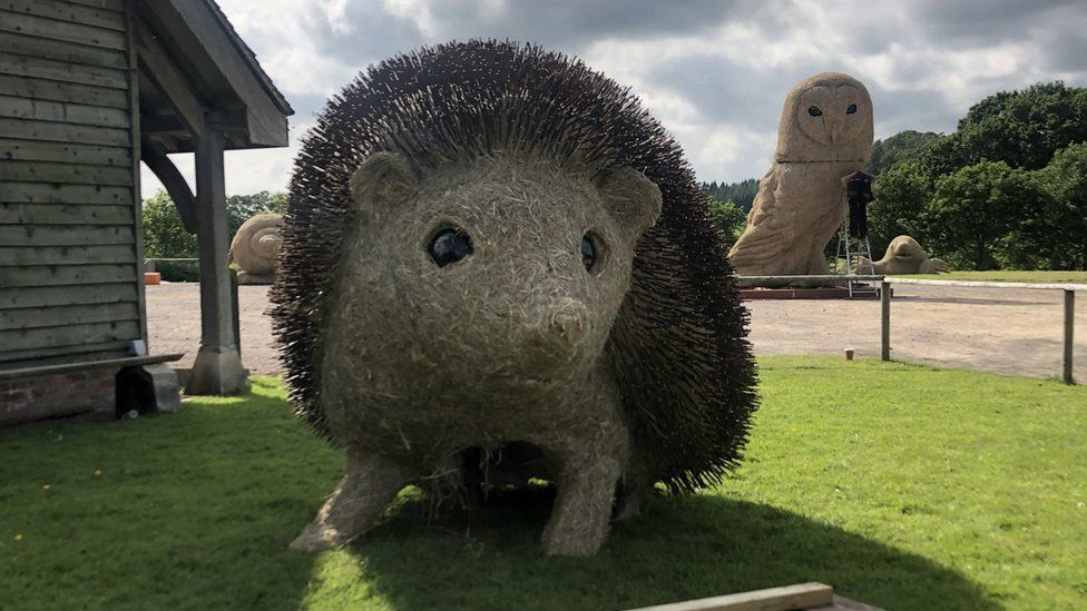 Hedgehog at Longleat