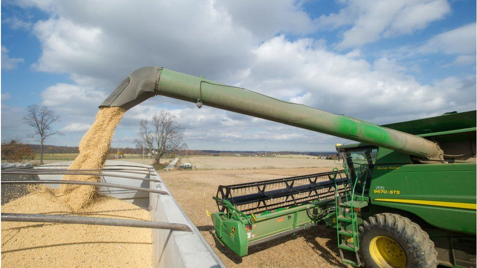 Loading soybeans into bins after harvesting in Jarrettsville, Maryland, USA.