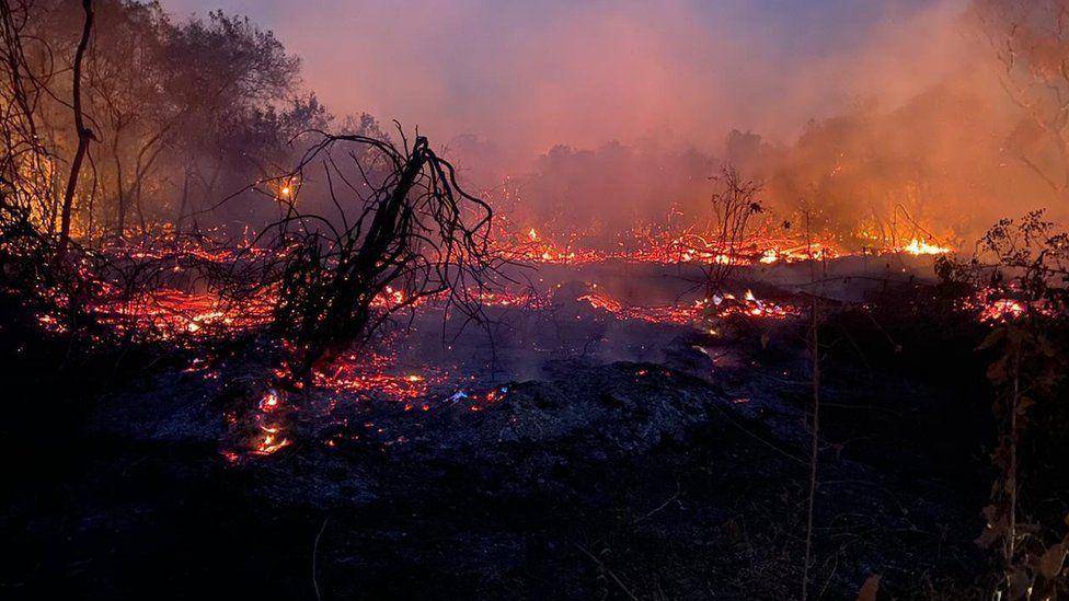 Fuego en el Pantanal.