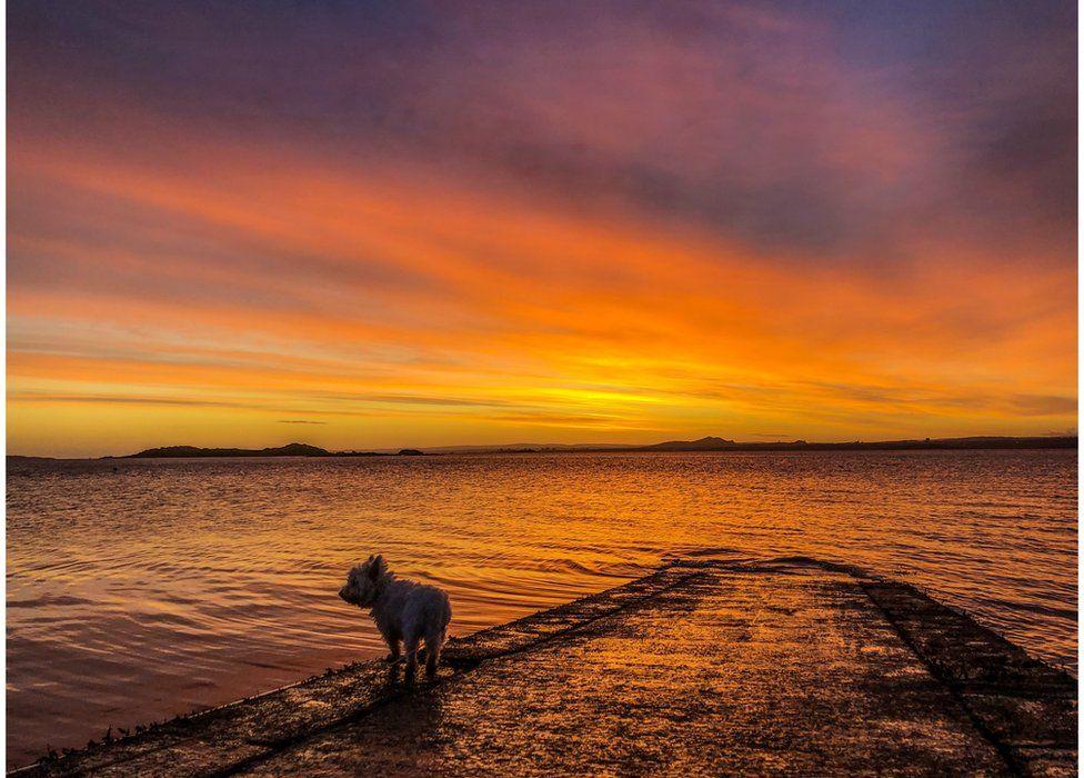 Dalgety Bay in Fife