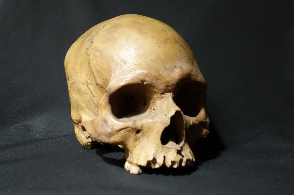 low priced 99fe0 9dd5c The skull of a 32-year-old Indian soldier who revolted against the British