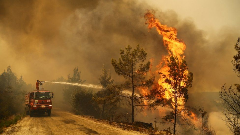 A firefighter extinguishes a forest fire near the town of Manavgat, east of the resort city of Antalya, Turkey