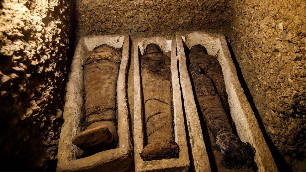 mummies in stone coffins