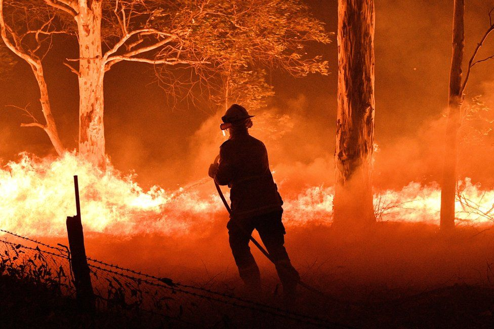 A firefighter hoses down trees and flying embers