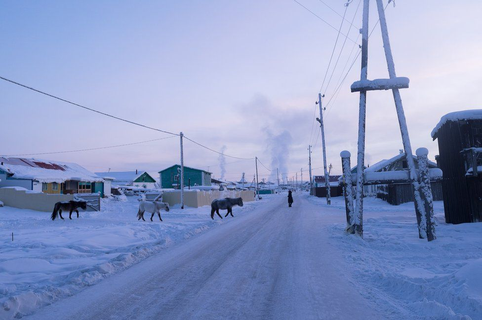 Three horses cross one of the main streets. Armed with thick fur and a layer of fat grown during the autumn, the horses and the dogs of the village spend the winter outside as temperatures often reach -50°C (-58°F).