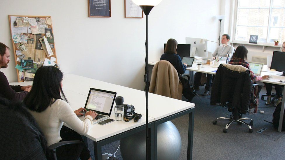 Workers with laptops at desks at the Provenance office in London