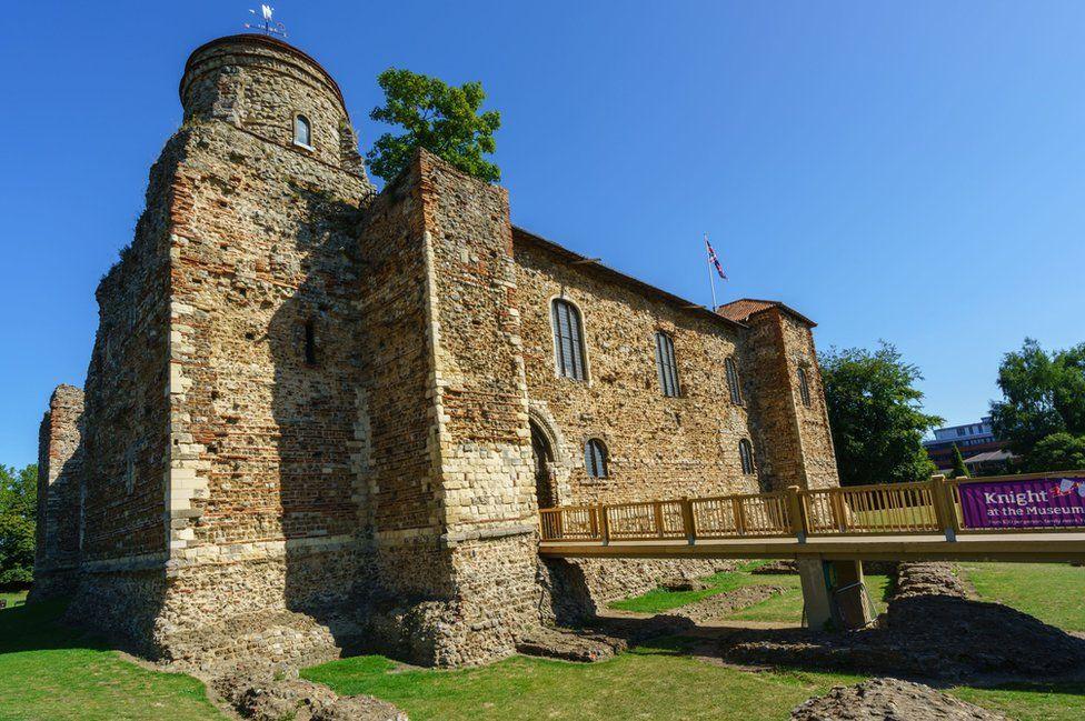 Colchester Castle tree