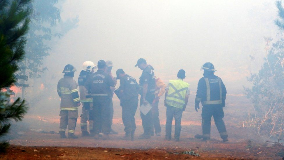 Firefighters and forensic police officers examine the place where three brigadiers of the Chilean National Forest Corporation died, 17 Jan 17, Maule