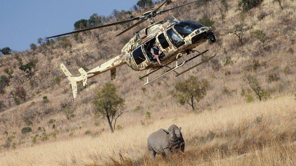 NGO chopper near rhino