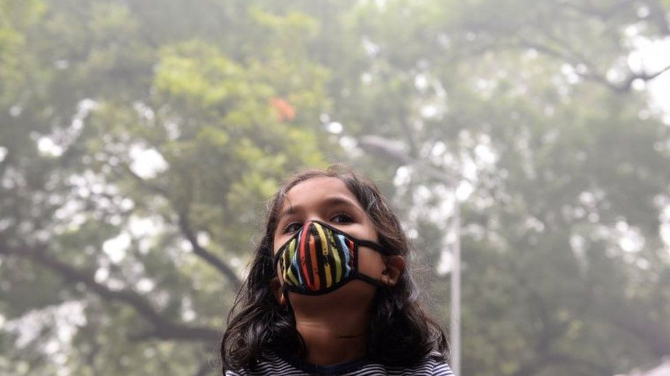 A young Indian protester wearing a protective mask takes part in a rally urging immediate action to curb air pollution in New Delhi on November 6, 2016.