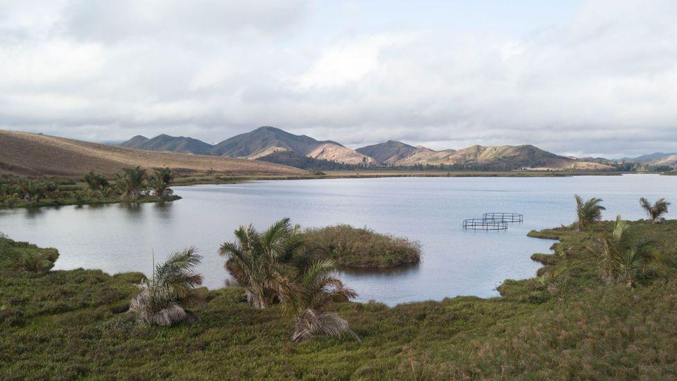 Lake Sofia and floating aviaries (c) WWT