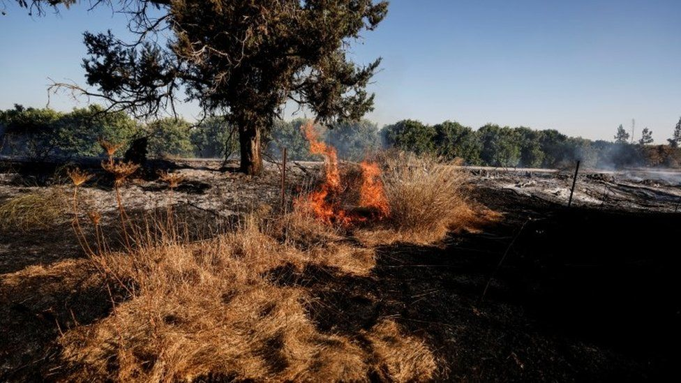 A field near Nir Am, in southern Israel, is seen on fire after Palestinians in Gaza sent incendiary balloons over the border (15 June 2021)