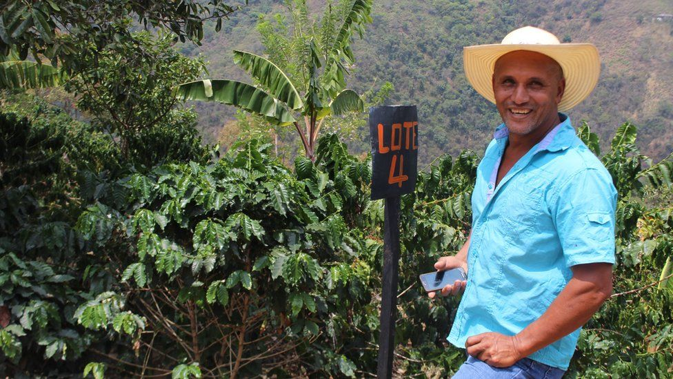 Ever Osorio on his coffee plantation
