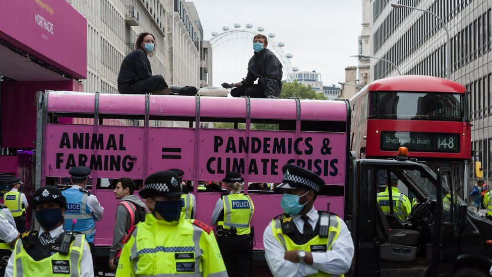 Protesters glued to the top of a slaughterhouse van painted pink