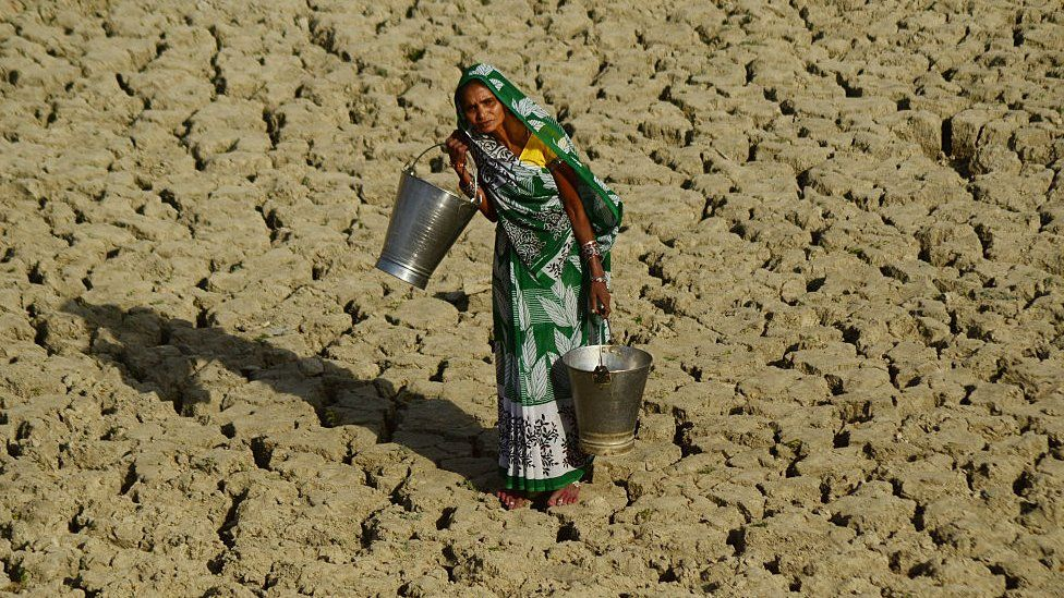 An Indian woman walks on a dried and cracked water pond as she carries bucket to take drinking water in Kaushambi