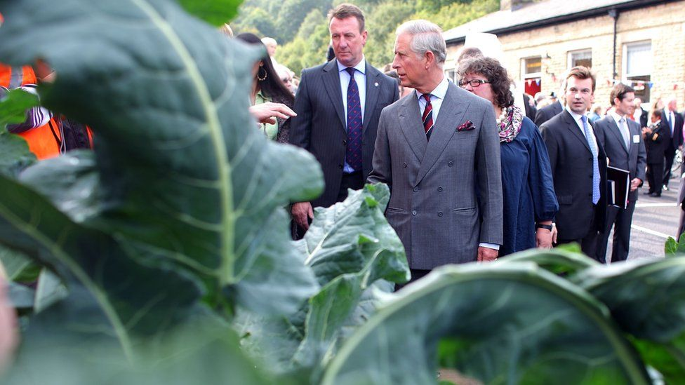 Prince Charles at Todmorden