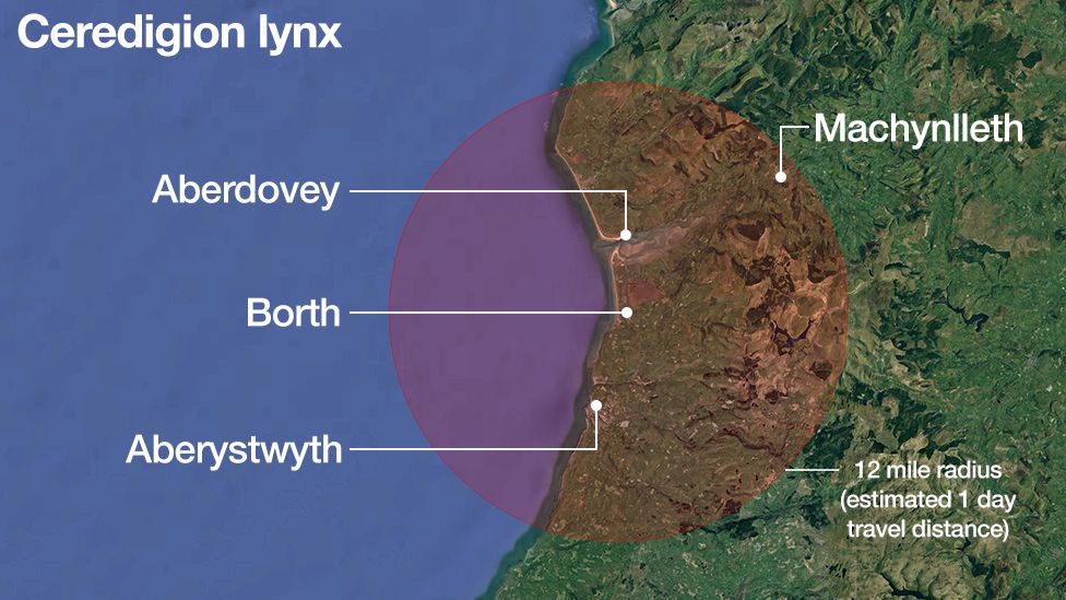 Map showing the area the lynx is thought to be in