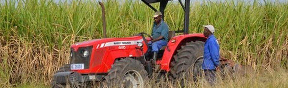 Farm owners at the Ziphophozele farm, outside Durban