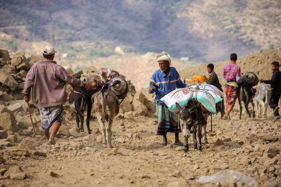 Donkeys carrying gas canisters