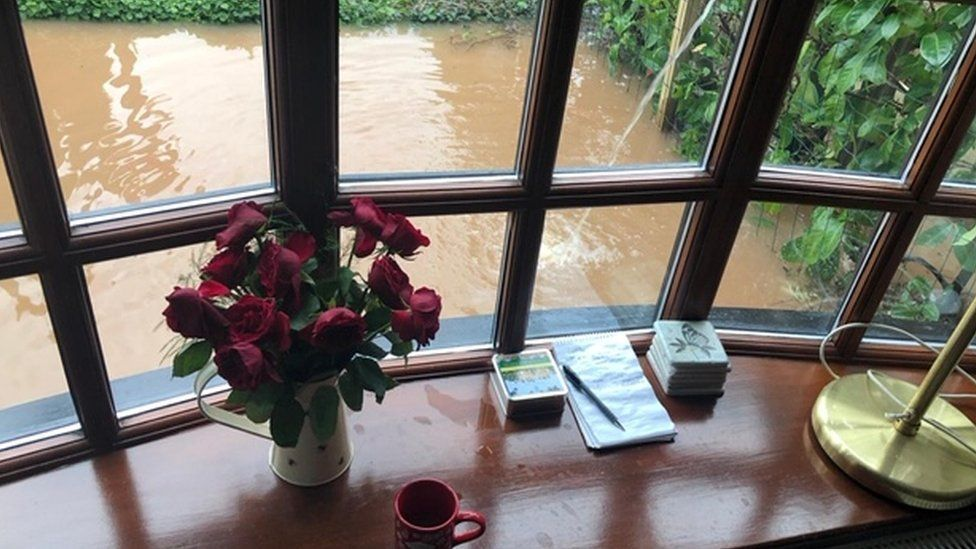 View of flooded garden