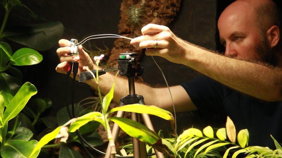 Al Davies sets up camera