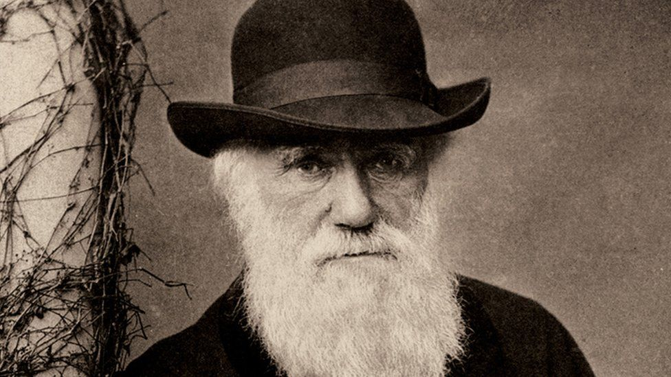 Charles Darwin's work on evolution theory by natural selection changed the way we think about the natural world