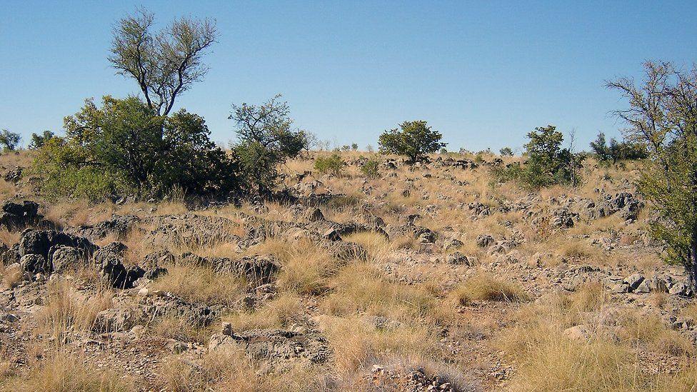 Riversleigh's ancient landscape