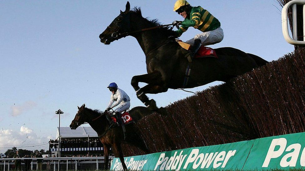 Paddy power horse racing betting rules baseball beyonce on bet experience
