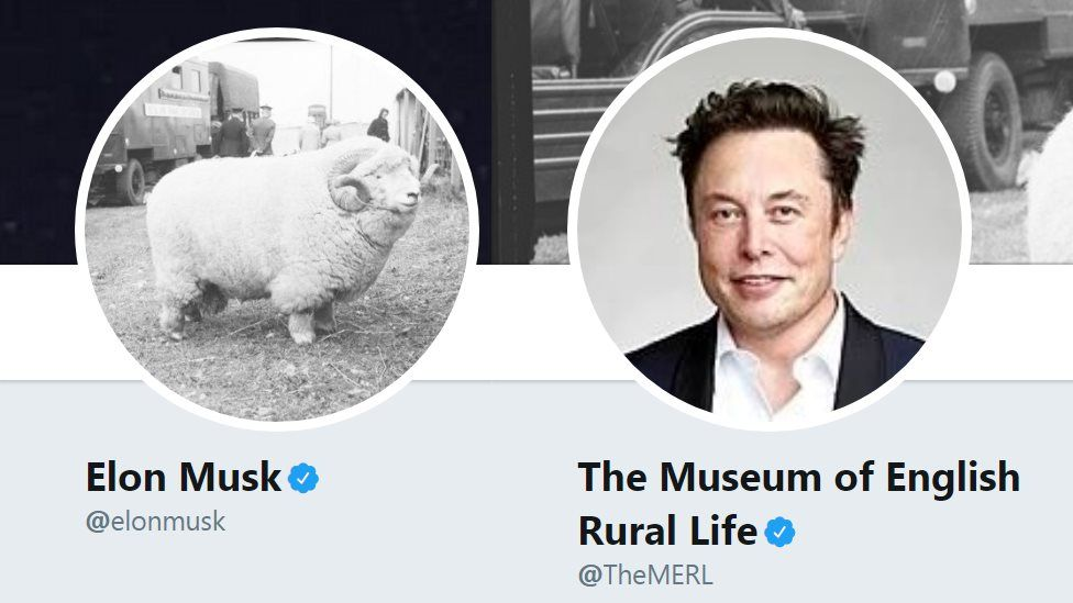 Elon Musk swaps shots with Museum of English Rural Life