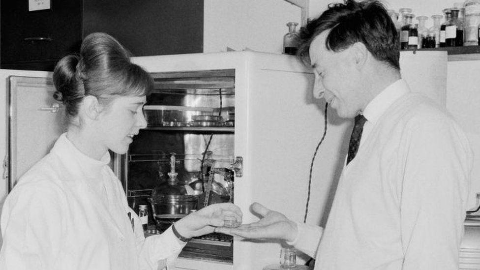 Jean Purdy, la científica pionera que ayudó a desarrollar la fecundación in vitro y nunca fue reconocida
