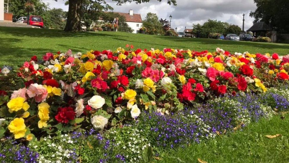 Sedgefield flower display
