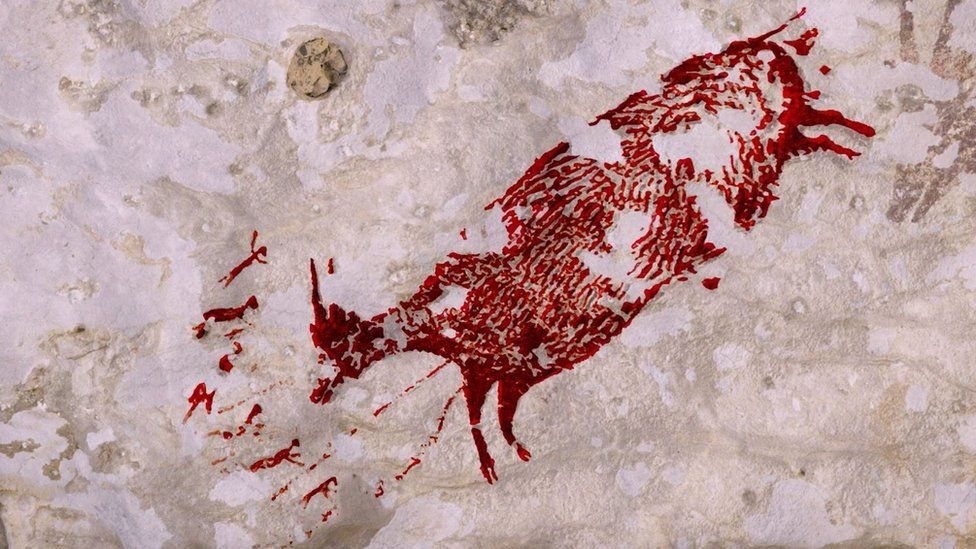 Sulawesi art: Animal painting found in cave is 44,000 years old