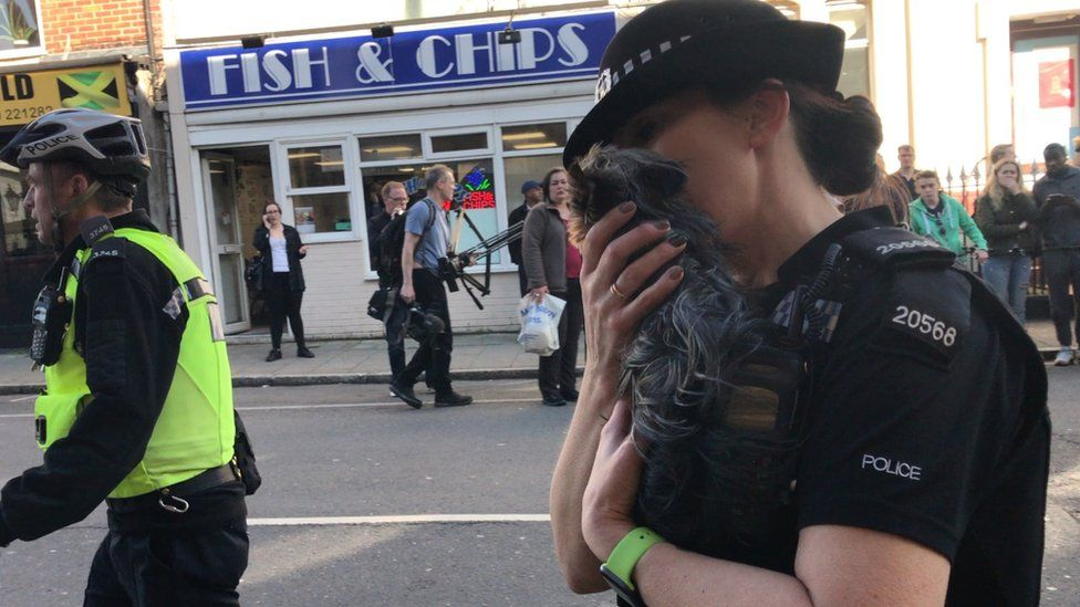 Police officer rescuing dog