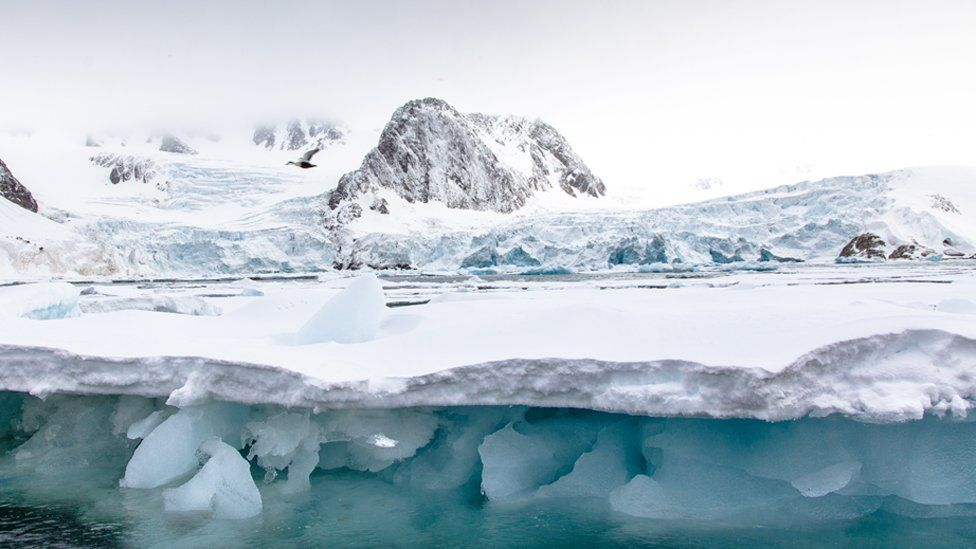 Climate change: Arctic glaciers 'shrinking by 300m each year'