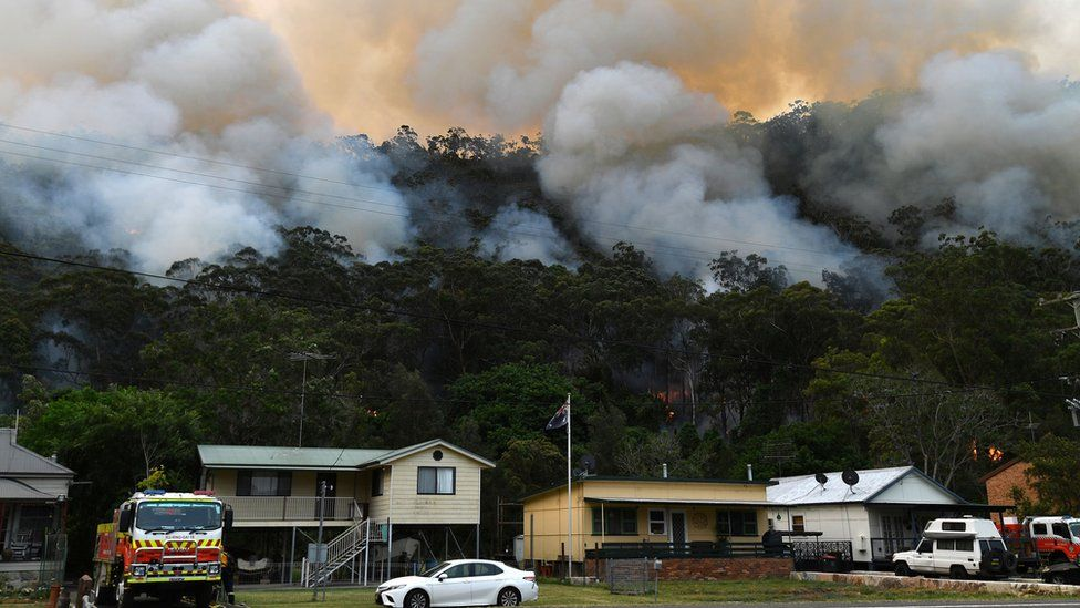 Smoke rises from thick forest behind a row of houses
