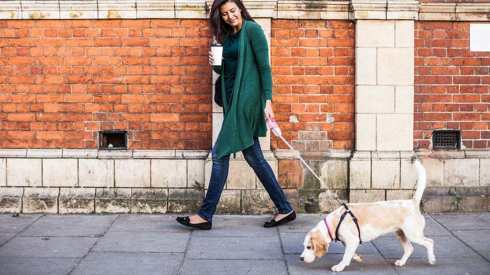 Dog walker with dog