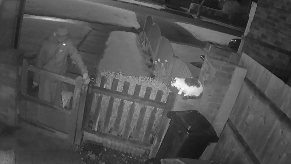 Screen grab from just before the attack showing the dog
