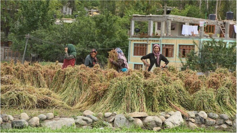 Image result for తుర్తుక్.